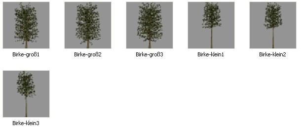 Bäume ahorn objekte 3d bäume apfel objekte 3d bäume birke